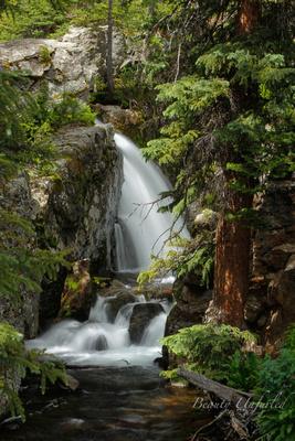Intimate Falls